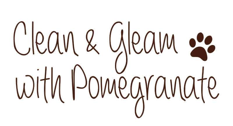 Clean & Gleam with Pomegranate Shampoo