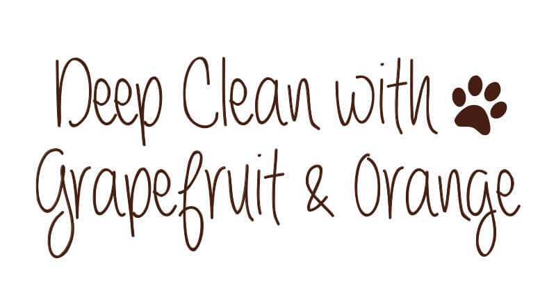 Deep Clean with Grapefruit and Orange Shampoo